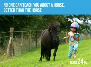 no-one-can-teach-you-paarden-quotes